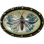 Art Deco Reverse Carved & Painted Glass Intaglio Butterfly Pin