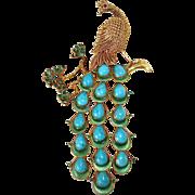 Superb 14k Filigree Peacock Pin w Teardrop Turquoise & Enamel