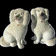 "Antique Pair Staffordshire Poodles 7"" High Separate Legs c1910"