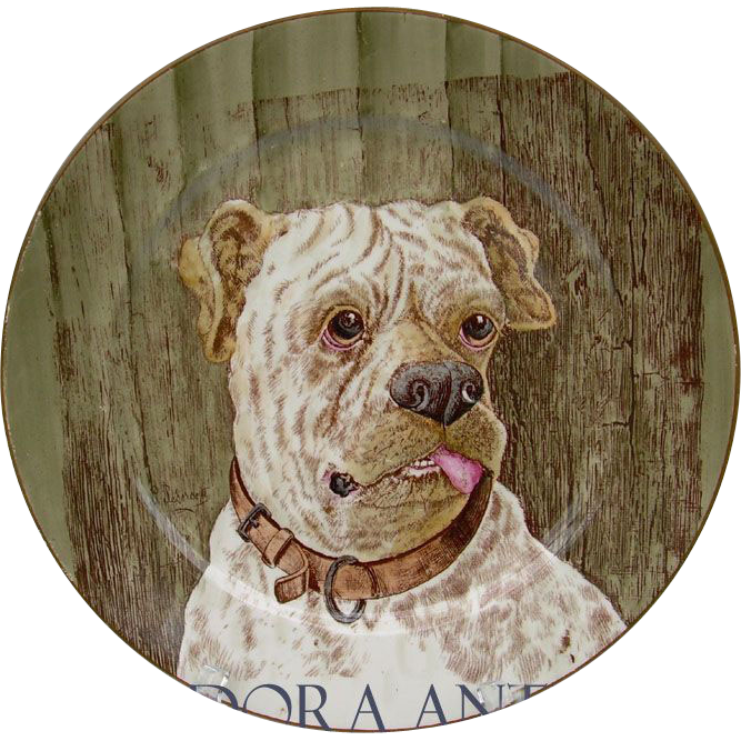 Antique Cauldon Dog Plate. Portrait of a Bull Mastiff. England c1905-1910