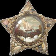 Antique Shell Art Star Nautical Theme under Bubble Glass c1880