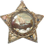 Antique Shell Art Star Nautical Theme under Bubble Glass c1880