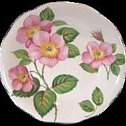 Grafton Pin/Butter Dish English Bone China Queen Alexandra Roses