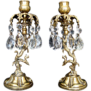 Pair of Antique Brass Candlesticks/Candleholders, Squirrels and Crystal Drops