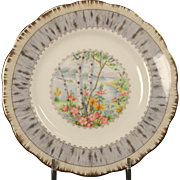 Beautiful Royal Alpert Bone China ''Silver Birch'' Bread and Butter Plate.