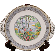 Beautiful Royal Alpert Bone China ''Silver Birch'' Handled Cake Plate.