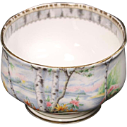Beautiful Royal Alpert Bone China ''Silver Birch'' Open Sugar.