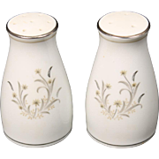 Beautiful Noritake ''Ardis'' Salt and Pepper Shaker Set.