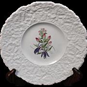 Beautiful Royal Cauldon Salad Plate in the ''Cardinal Flower'' Pattern.