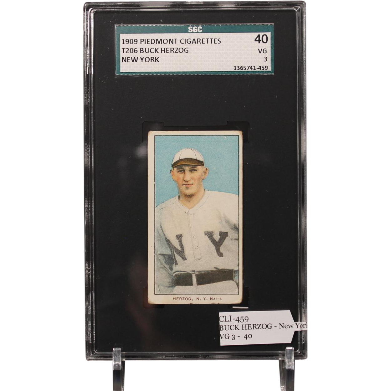 T206 BUCK HERZOG - New York SGC grade 40 VG 3