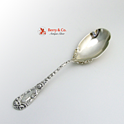 Chrysanthemum Serving Spoon Durgin Sterling Silver Shreve Bowl B