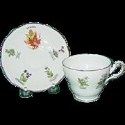 Vintage Royal Darwood Teacup Tea Cup Saucer Bone China Canada Flowers Provinces