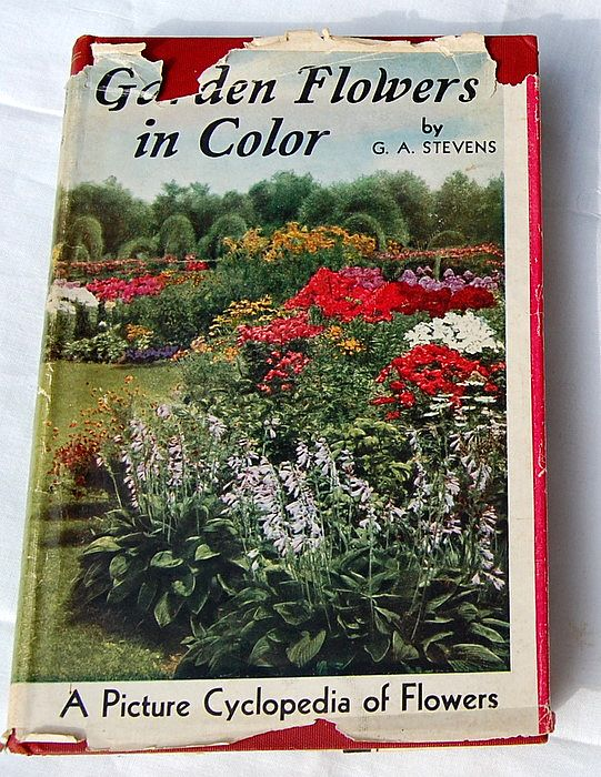 1936 Garden Flowers In Color 469 Colored Illustrations
