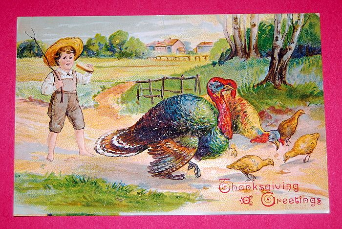 11-27-1907 Thanksgiving Grettings Postcard