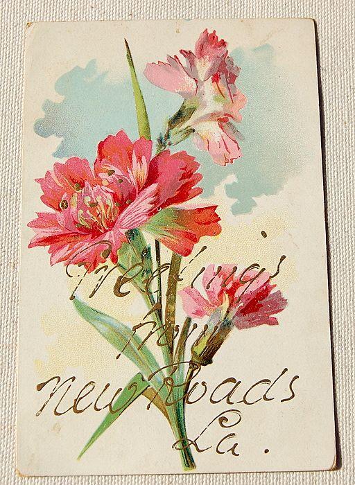 Vintage Postcard 1907 New Roads Louisiana