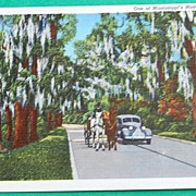 Vintage Postcard Mississippi's Modern Highways