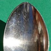 Community Silverplate Fleur D Luce Serving Spoon