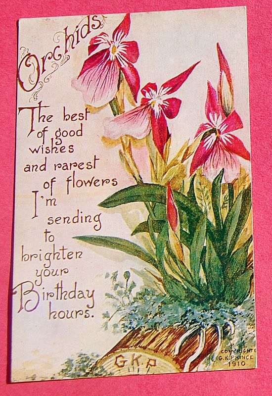 1910 Birthday Post Card Orchids-G. K. Price