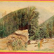 1865 The Glens Of The Catskills No. 4208  Stereoview