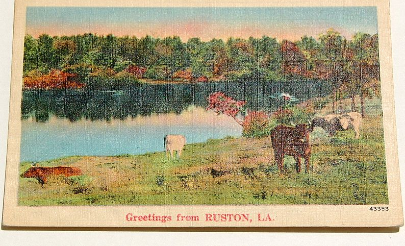 Greetings From Ruston, La.  Postcard #43353