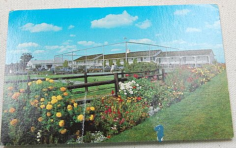 Vintage Postcard Sparhawk Resort Ogunquit Maine