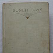 Rare Vintage 1917 Sunlit Days Florence Hobart Perin