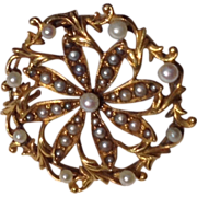 Victorian 14 K Gold & Seed Pearl Starburst Pendant Brooch