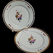 "Pair Charles Field Haviland Limoges Winterthur 10 3/4"" Dinner Plates"