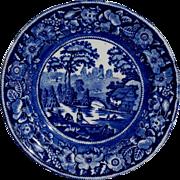 Victorian Blue & White Wild Rose Staffordshire Plate