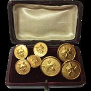 Antique Set Of J. R. Gaunt & Son Gold Plated Brass Fox Head Buttons