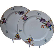 Set Of Two Epiag Bridal Rose Dinner Plates