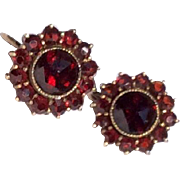 Vintage Bohemian Garnet Screw Back Earrings