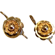Victorian Tiny Gold Filled Etruscan Revival Earrings