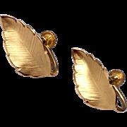 Vintage 12 K Gold Filled Leaf Motif Screw Back Earrings