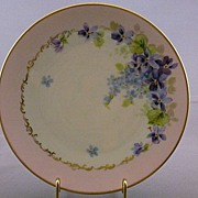 Vintage H & Co. Bavaria Handpainted China Plate
