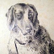 19C Excellent Drawing Dog Signed Deiker Listed Artist