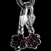 Elegant Silver Earrings Garnets Star Shape Case