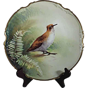 Porcelain Wall Plate Limoges France Game Bird Hand Painted & Signed