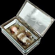 Monastery Work Fatschenkind Baby Jesus Wax Sculpture in Crystal Box