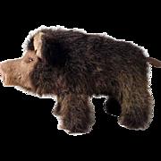 Steiff Wutzi Wild Boar #2675/15