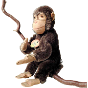 Chimpanzee Jocko Children's Darling Steiff