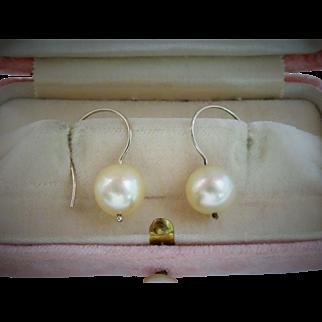 Beautiful Cultured Saltwater Pearl 14K White Gold Drop Earrings Fine