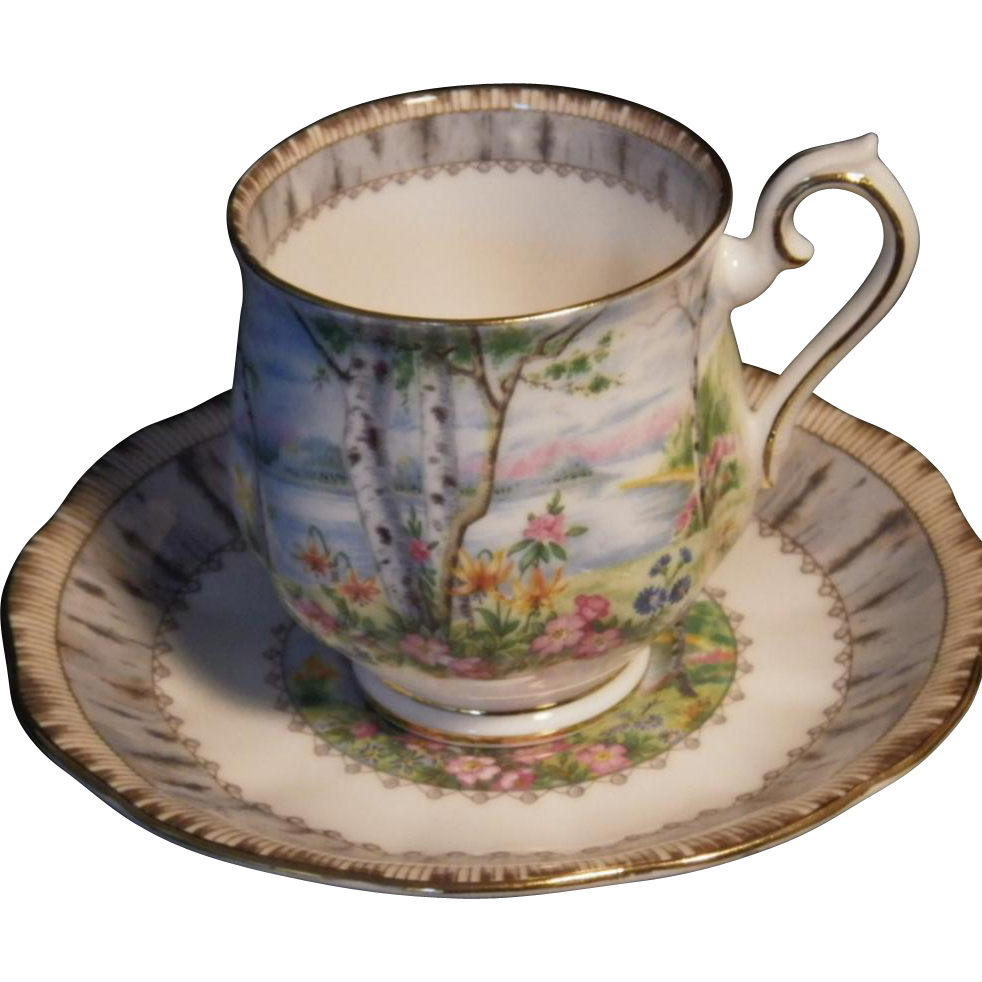 "Hard to Find Vintage Royal Albert ""Silver Birch"" Pattern Demitasse Cup & Saucer Set"
