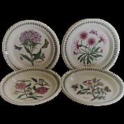 Portmeirion Botanic Garden Salad Plates set of 4