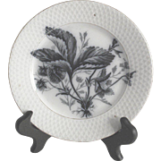 Vintage Black and White Transfer Dessert Plate with Strawberries Maastricht