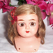 ON SALE Tiny Early German Celluloid Doll Shoulder Head w Sleep Eyes & Orig Mohair Wig. Schutz-Marke. Turtle Mark