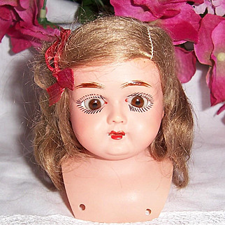 HUGE SALE Tiny Early German Celluloid Doll Shoulder Head w Sleep Eyes & Orig Mohair Wig. Schutz-Marke. Turtle Mark