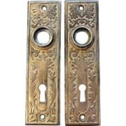 Pair of Victorian Eastlake Brass Plated Door Plates