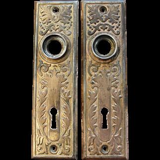 Pair of Victorian Eastlake Brass Plated Door Plates