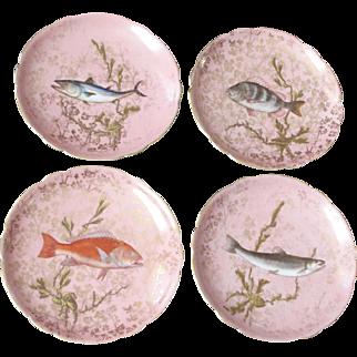 Vintage D & Co. Limoges France 11 Fish Plates & Gravy Boat (c. 1879-1900)